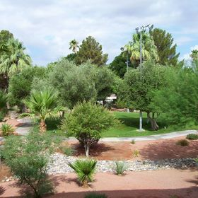 Grand Destination Vacation Club at the Oasis — Resort Grounds From Balcony