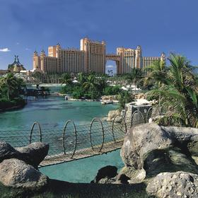 Harborside Resort at Atlantis Shark Pool Bridge