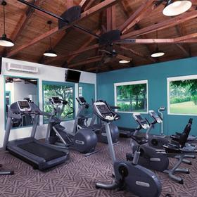 The Bay Club at Waikoloa Beach Fitness Center
