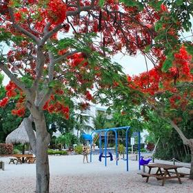 Ocean Pointe Suites at Key Largo Playground