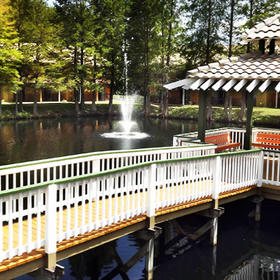 Best Western Premiere Saratoga Resort Villas Lake and Walkway