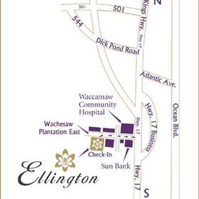 Ellington at Wachesaw Plantation East - Area Map