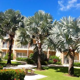 Grand Caymanian Resort — Grounds