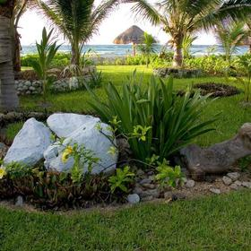 El Dorado Seaside Suites - Grounds