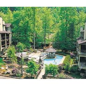 Tree Tops Resort of Gatlinburg - Pool