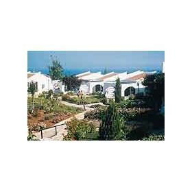 Dedeman Olive Tree — - Villas