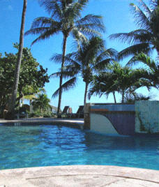 Coconut Beach Resort - Pool