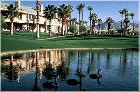 Marriott's Desert Springs Villas - Grounds