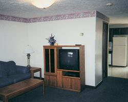 Mountain Meadows Resort - Unit Living Area