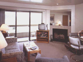The Park Regency - Unit Living Area
